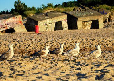 Bunkry na plaży